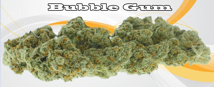 Bubblegum Banner