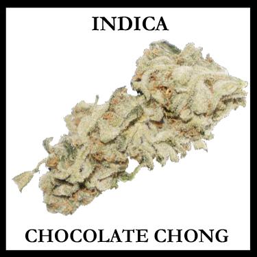 CHOCOLATE CHONG1
