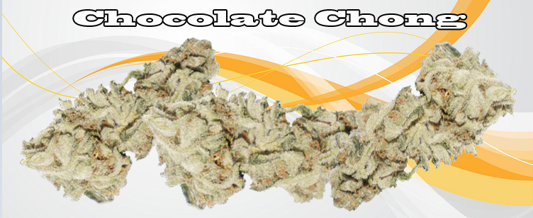 Chocolate Chong Banner