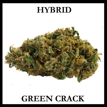 Green Crack Hybrid