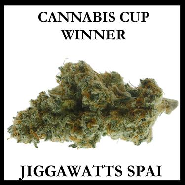 Jiggawatts Spai