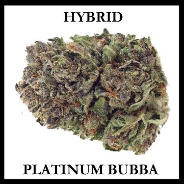 Platinum Bubba Hybrid